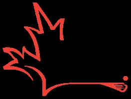 2016worldlax_logo
